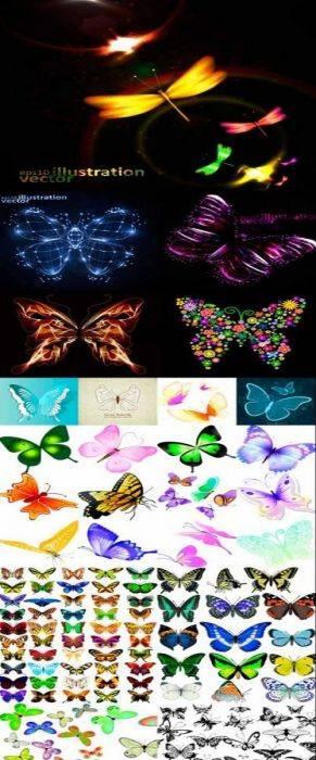 Beautiful vector butterflies 40 AI, EPS