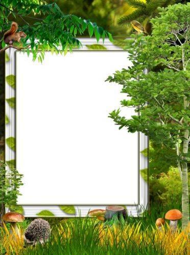 A set of PNG frames - For every taste