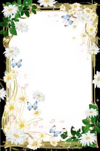 Set of flower framework for photo - Pleasure