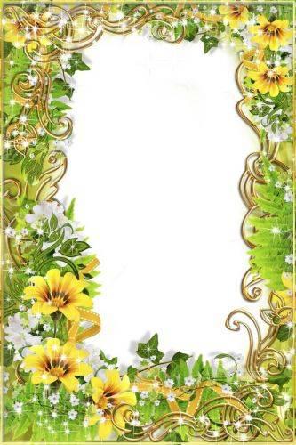 Set of flower framework for photo - Charm