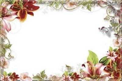 Set of 12 PNG free frames - Flower Paradise