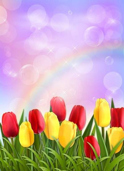 Photoshop source, multilayer psd - tulips, rainbows,reflections on a purple background