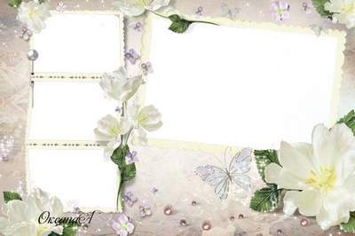 Frames for registration of four wedding photos with white flowers - Council and love young