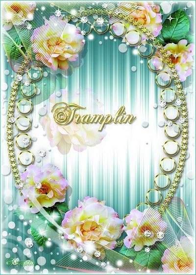 Frame - I saw the rose velvet softness