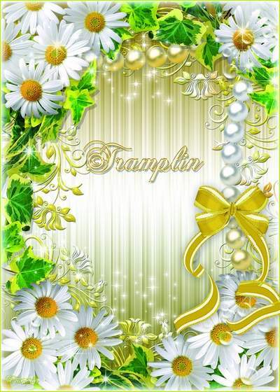 Summer Photo Frame with daisies and a bow