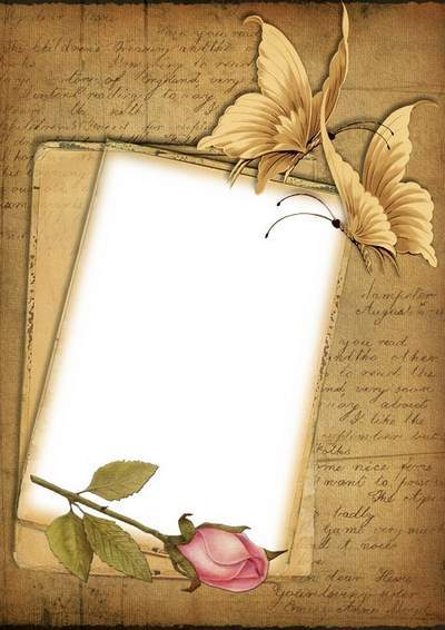 Vintage frame with rose and butterflies - Tenderness
