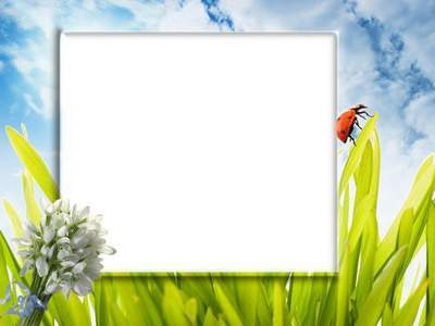 Spring Frame psd temlate for Photoshop