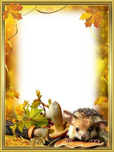 Photo frame - From the beauty of nature pales vanity
