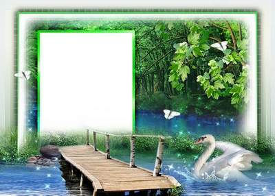Frame for photoshop - My Swan