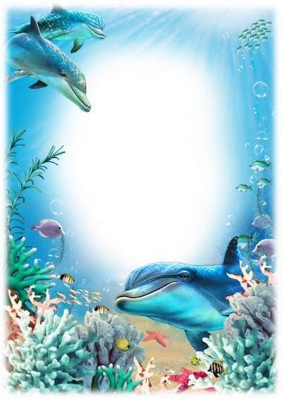 Summer marine photo framework - In the azure ocean
