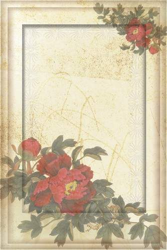 Vintage Frames - Camomiles and Peonies