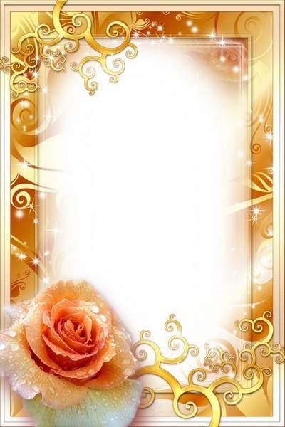 Flowery Frame - Orange Rose in Golden Blinking