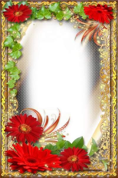Flower Frame - Attractiveness of Red Gerberas