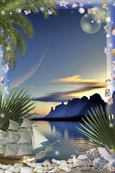 Frame - Sun, palm trees and sand