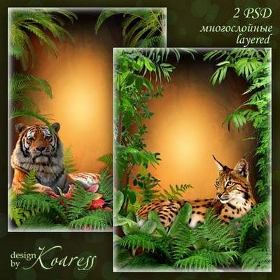 Frame for a photo - the Beautiful tiger. Transparent PNG Frame ...