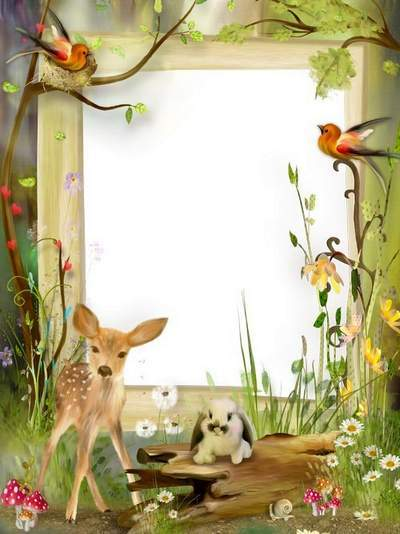 Frames for children - Spotted deer in the woods