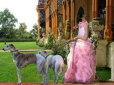Girl in pink dress with dogs - layered PSD template costume