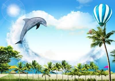 PSD frame - Summer dolphin