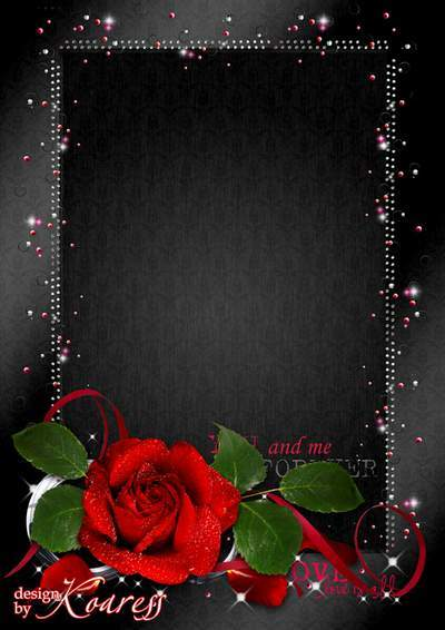 Frame for romantic photos - Scarlet rose