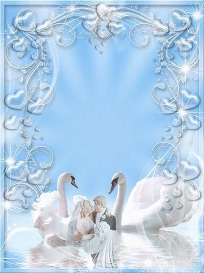 Wedding framework - Swan a fidelity