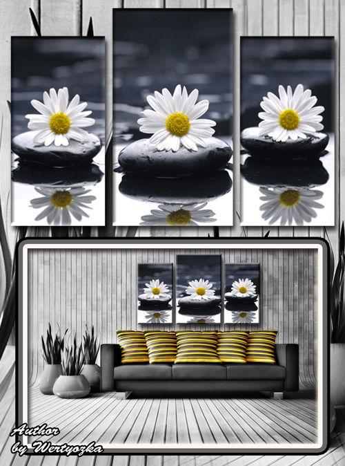 White daisy, stones, beads, reflection, spa - Triptych in psd format
