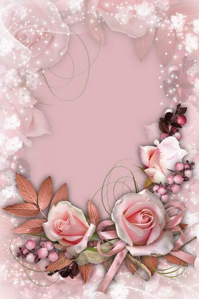 Photo Frame With The Pink Roses Charm Of The Vintage Photo