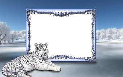 Photoshop frame psd file  - Winter and the white tiger