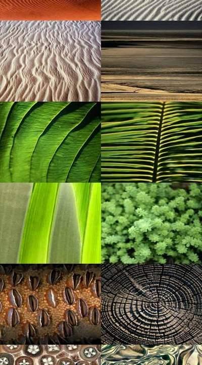 Mix Textures JPEG - sand, shells, leaves, nature - 50 jpeg, 3885x2565 px