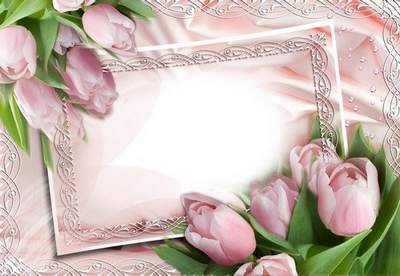 Frames - The first spring flowers