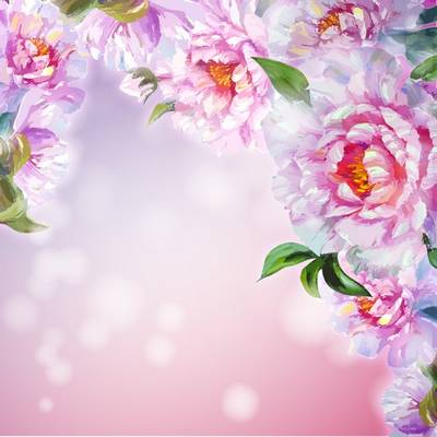 Free psd backgrounds - 2 layered psd file beautiful flower peonies, 7677x7677 px