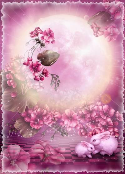 Fantastic Frame - Pink Paradise