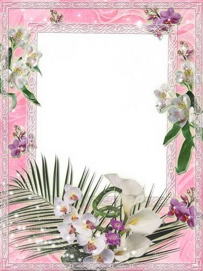 Romantic frame for Photoshop - Magic of Orchids