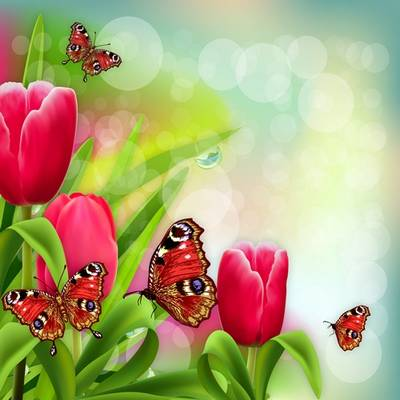 Flower psd background - spring, glare, butterflies, tulips - 2 layered PSD