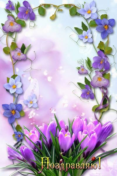 Greeting frame for portrait photo - Lilac and crocuses