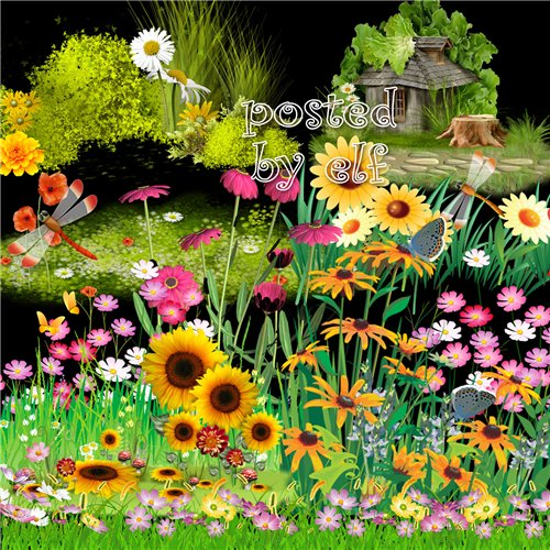 Clipart PNG clusters -  43 PNG images Lawn, grass with flowers, transparent background download