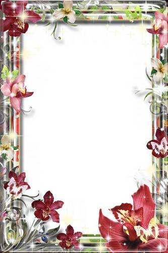 Collection of frames - Your smile is a miracle