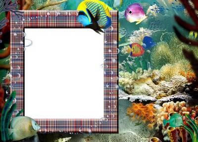 Photo Frame Ocean
