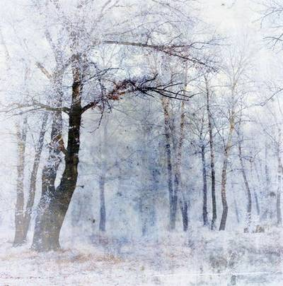 High quality raster jpg backgrounds for design - cold winter