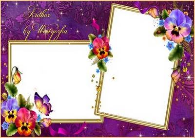 Beautiful flowers of pansies - Frame for Photoshop