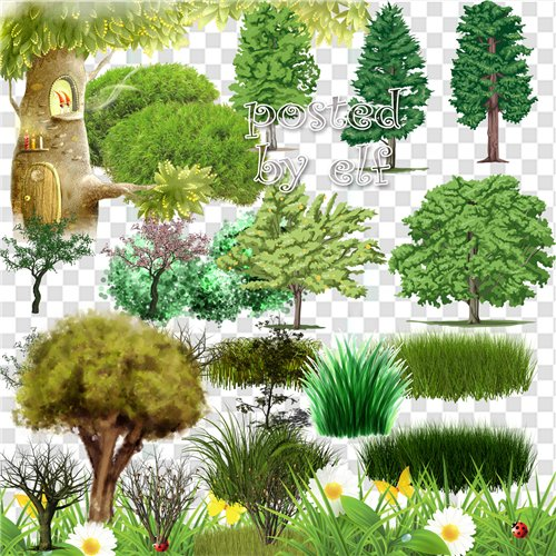 Clipart Png images – 24 png Grass , trees and shrubs, transparent background