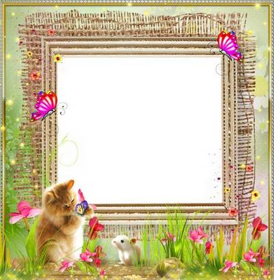 Children frame for Photoshop - Little kitten among flowers
