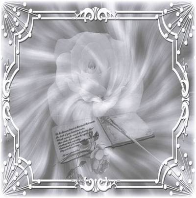 Beautiful Silver backgrounds with flowers, scrolls and a framework for designers