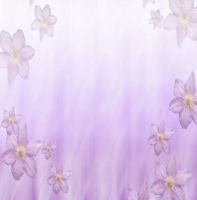 Set backgrounds - Love, spring and flowers