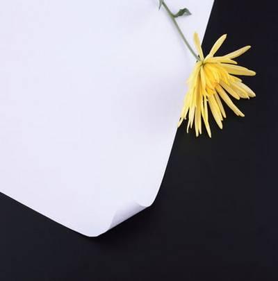 Set of 17 Floral Background jpeg