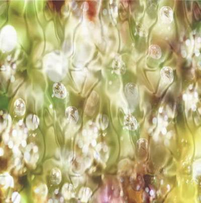 10 backgrounds - Brilliant varicoloured