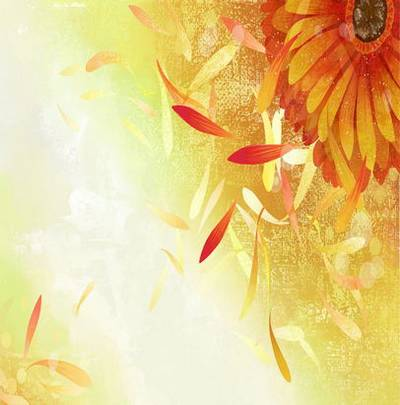 Gentile backgrounds - Backgrounds - With flowerses, sheets and petals
