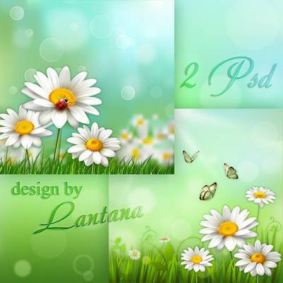 Green floral psd background with butterflies and daisies - 2 layered psd file download