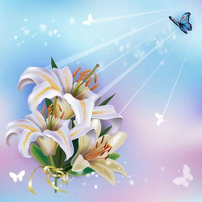 Free PSD file White lilies free download
