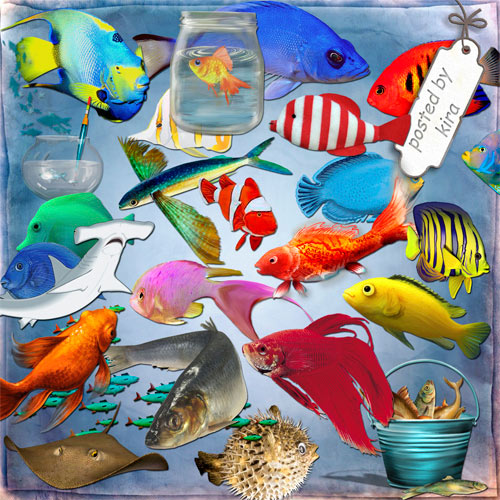 Sea clipart png Fish - 269 PNG images variety of fish, sharks, aquariums free download