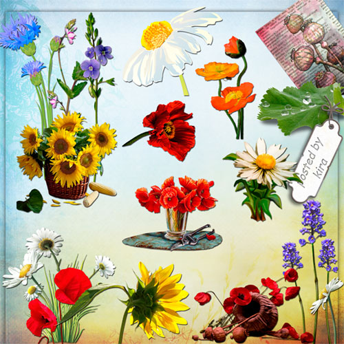 Flower clipart png - 121 PNG images free download